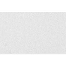 Обои антивандальные под покраску Бумпром CRISTAL (AMETIST) Бриз арт. СБ56 БВ08140018-11, фото 1